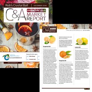 f&f-carousel-c&a-report